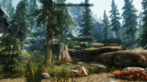 end result example of Ryvar's Skyrim modding